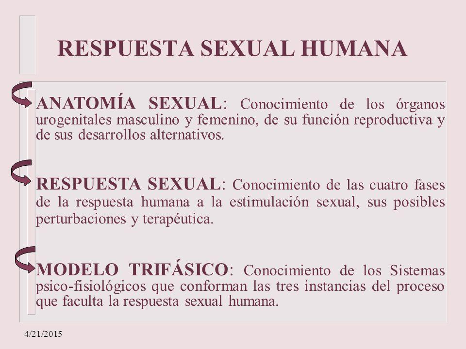 GUIAS DE PSICOSEXUALIDAD Nº 2 - ppt descargar