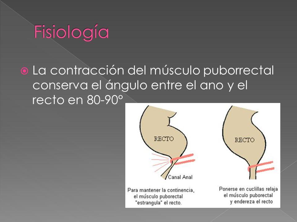 Patología orificial benigna - ppt video online descargar