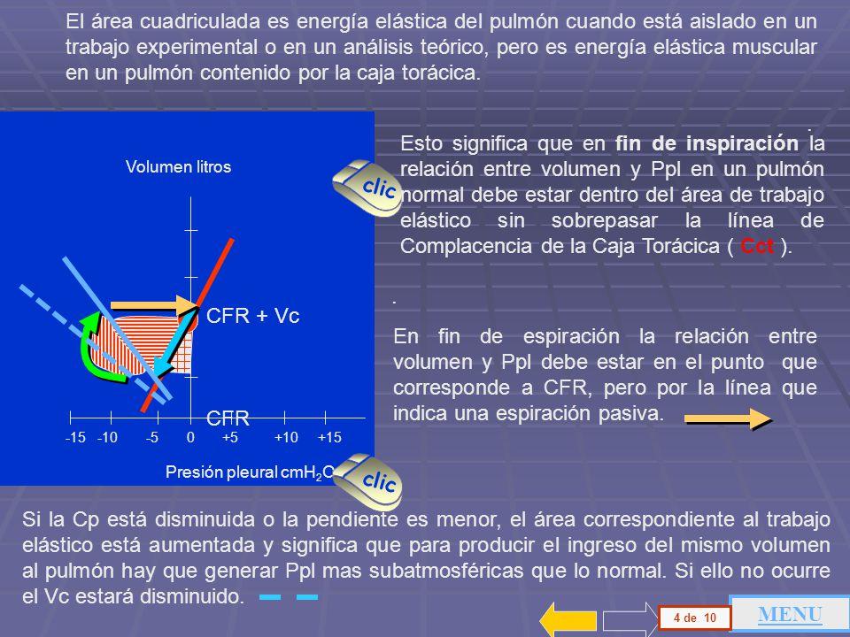 Perfecto El Diagrama De Sistema Muscular Marcada Regalo - Anatomía y ...