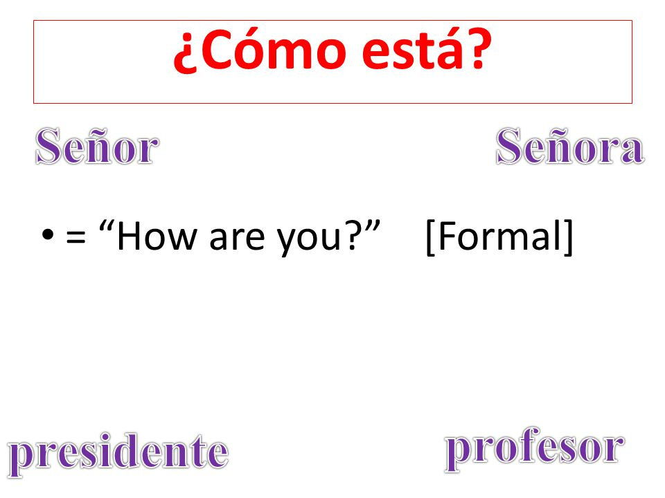¿Cómo está Señor Señora = How are you [Formal] profesor presidente