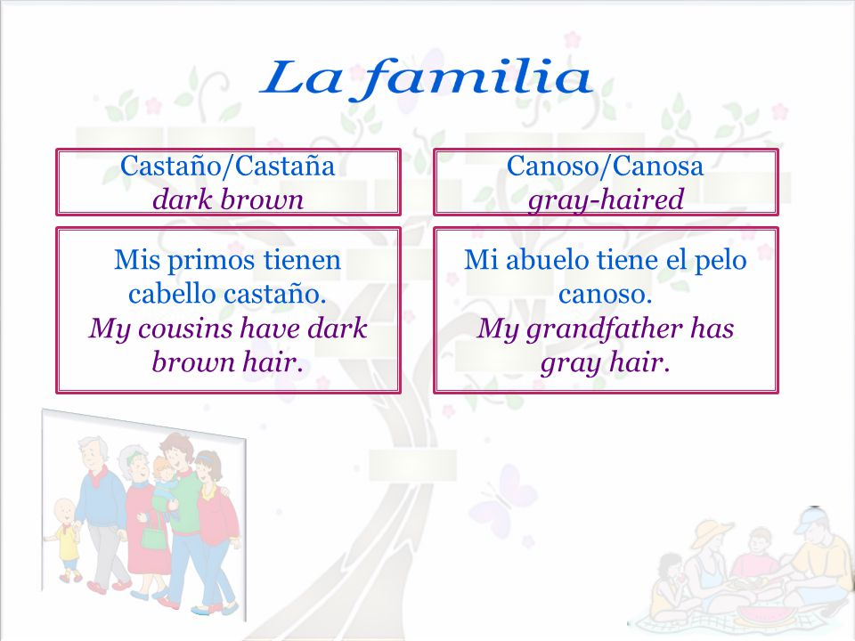 La familia Castaño/Castaña dark brown Canoso/Canosa gray-haired
