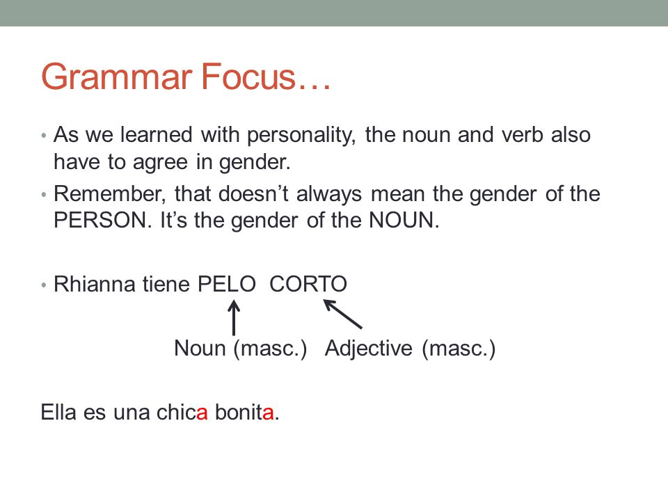Grammar Focus… As we learned with personality, the noun and verb also have to agree in gender.
