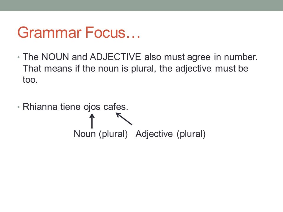 Grammar Focus… The NOUN and ADJECTIVE also must agree in number. That means if the noun is plural, the adjective must be too.