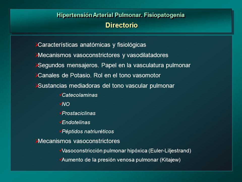 Primera Reunión Internacional en Hipertensión Arterial Pulmonar ...