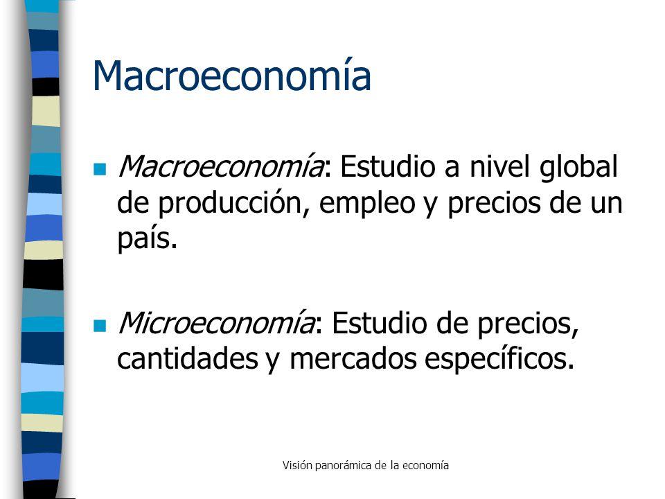 Visión panorámica de la economía - ppt descargar