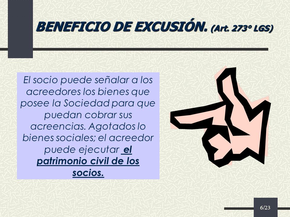 BENEFICIO DE EXCUSIÓN. (Art. 273° LGS)