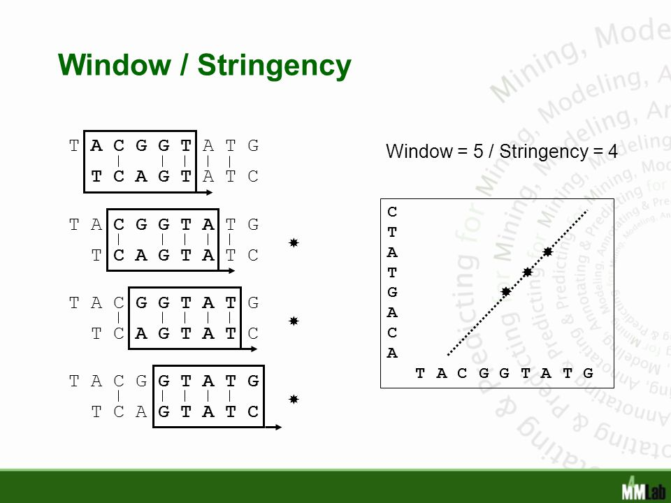 Window / Stringency T A C G G T A T G Window = 5 / Stringency = 4