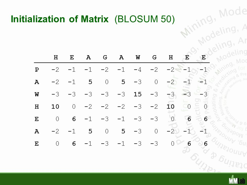 Initialization of Matrix (BLOSUM 50)