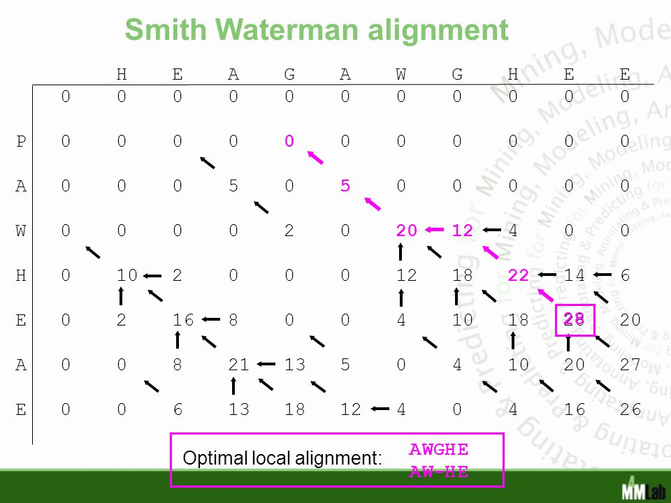 Smith Waterman alignment