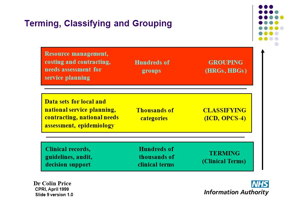 Terming, Classifying and Grouping
