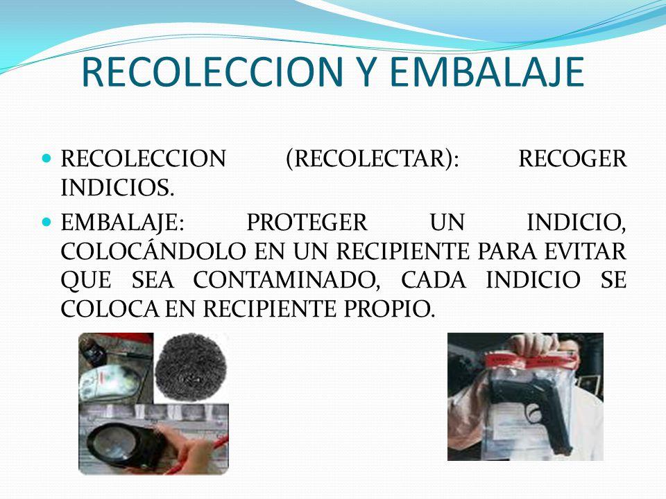 IDENTIFICACIÓN DEL CADÁVER - ppt video online descargar