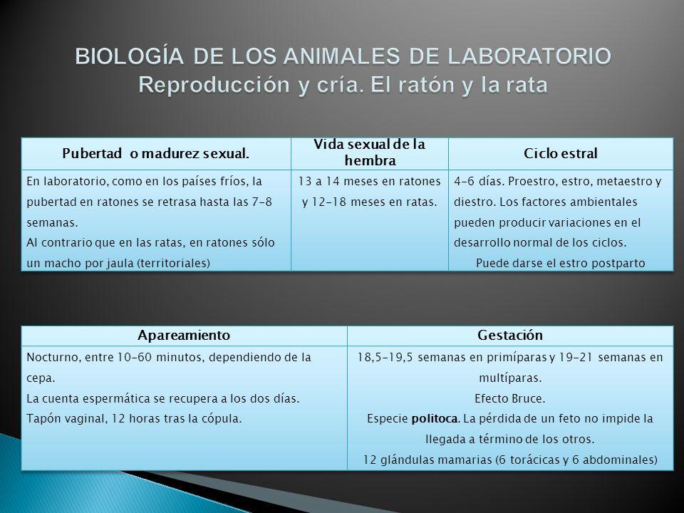 BIOLOGÍA DE LOS ANIMALES DE LABORATORIO Introducción - ppt descargar