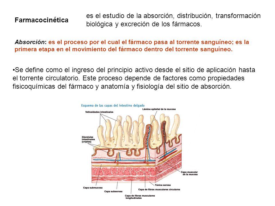 Define fisiologia