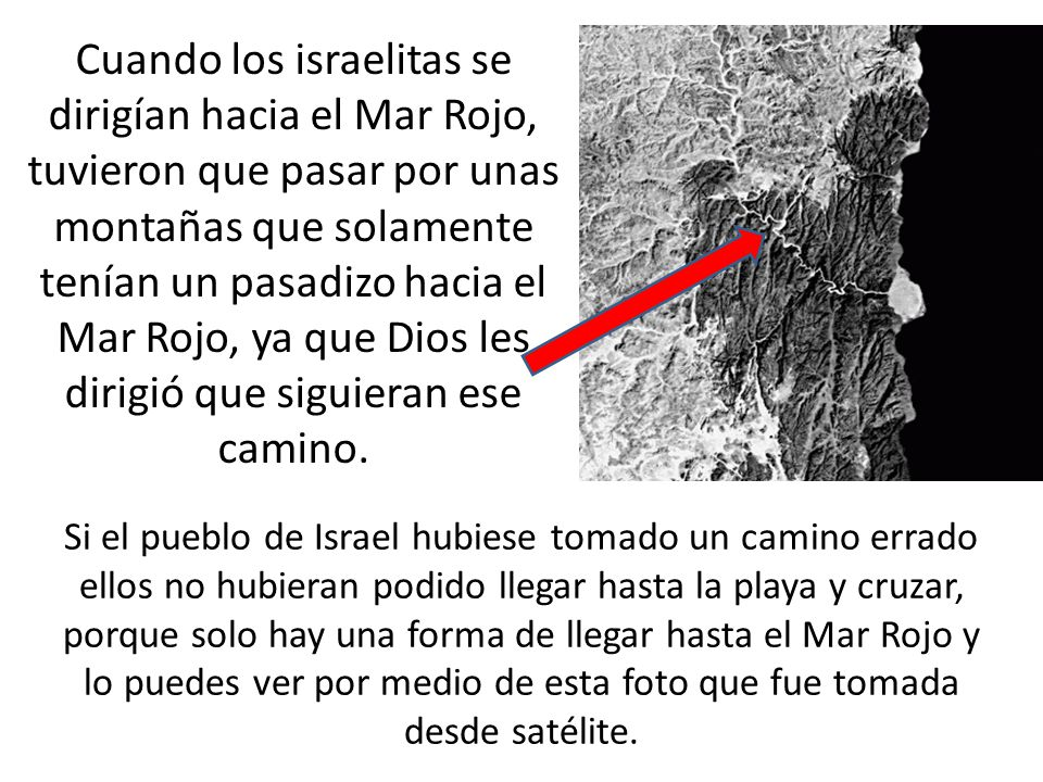 TESOROS DEL MAR ROJO. - ppt descargar
