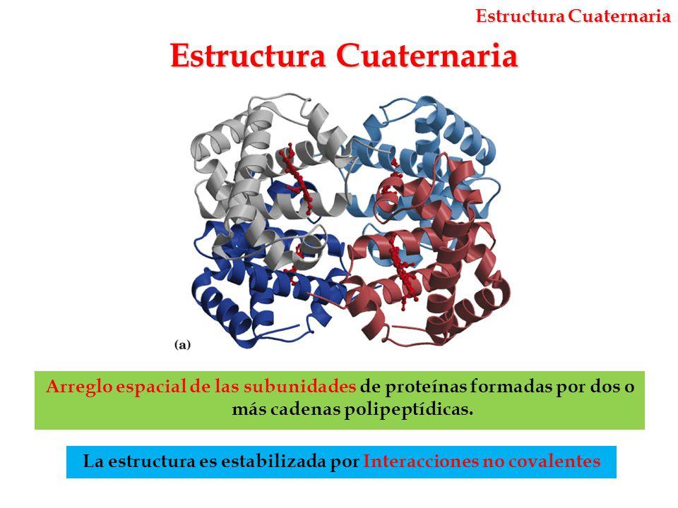 Estructura Y Propiedades De Aminoácidos Y Proteínas Ppt
