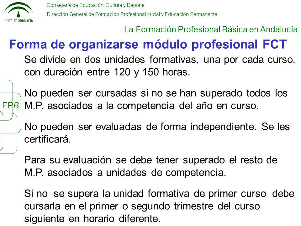 La Formación Profesional Básica En Andalucía Ppt Video