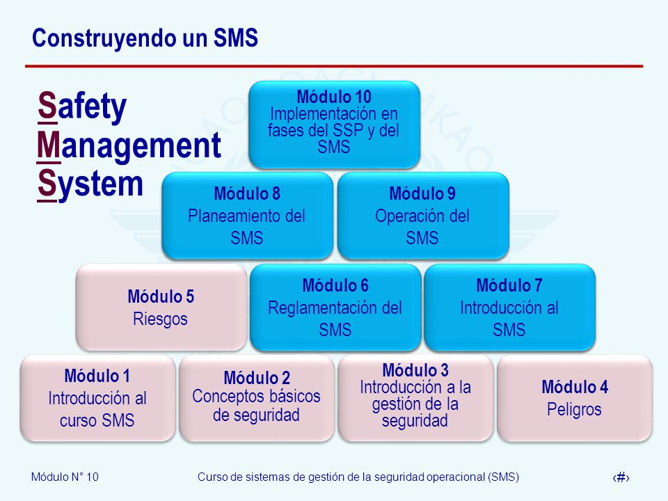 Safety Management System Construyendo un SMS