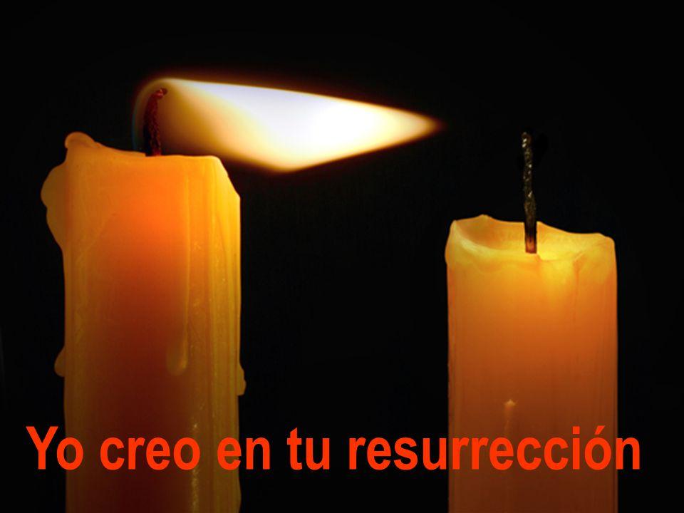 Resultado de imagen para Yo creo en tu resurrección