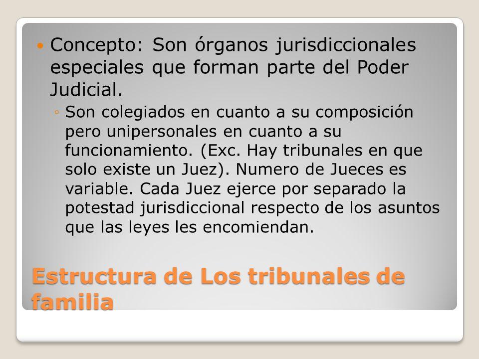 La Jurisdicción De Familia Derecho Civil Iv Ppt Descargar