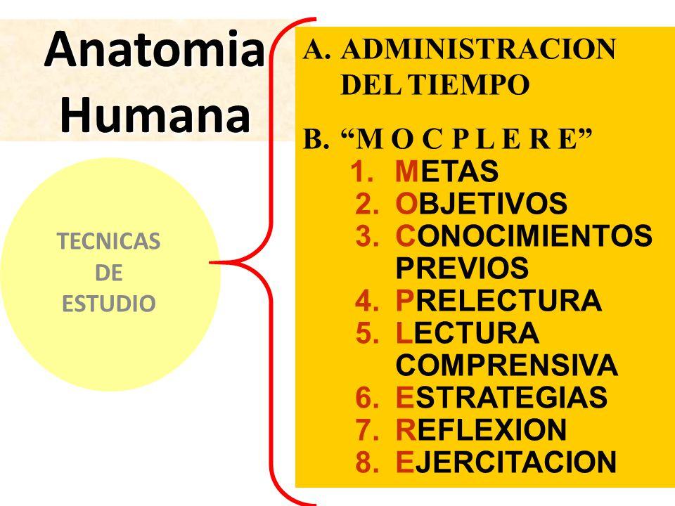 Estrategias Para Estudiar y aprender Anatomía. - ppt video online ...