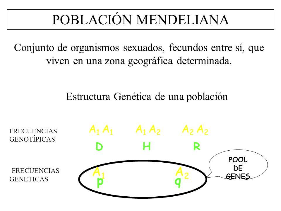 Evolución Uader Facultad De Ciencia Y Tecnología Ppt Descargar