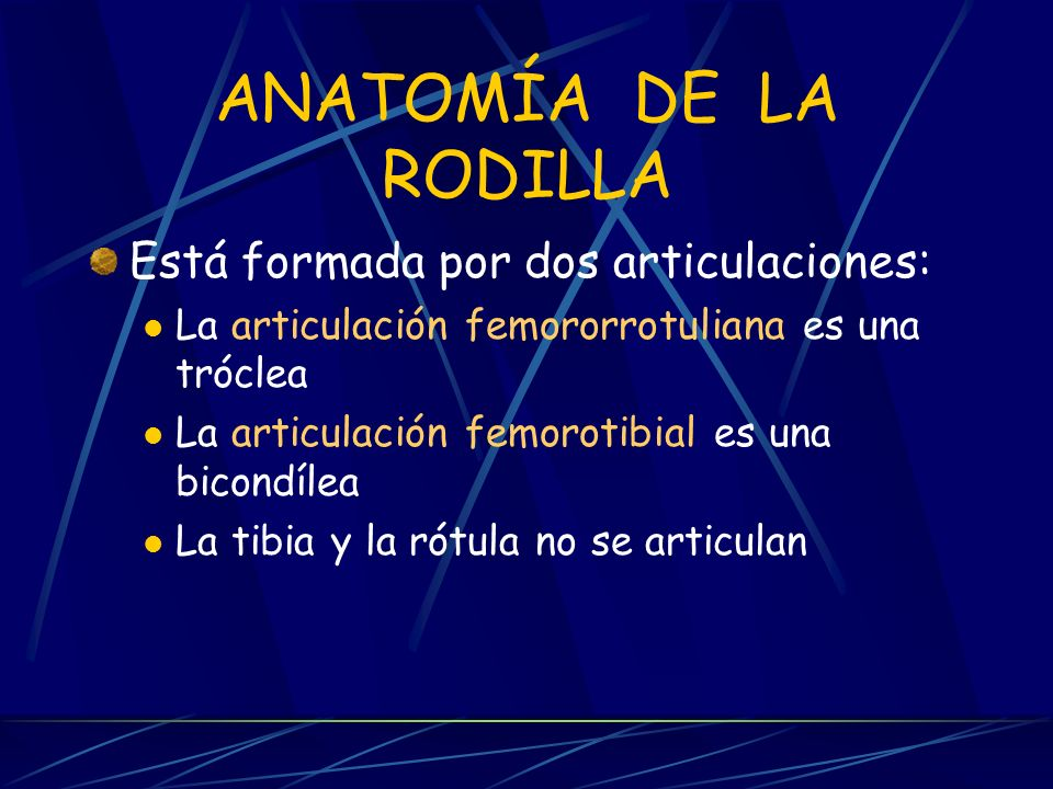 PRÓTESIS DE RODILLA GRUPO B. - ppt video online descargar