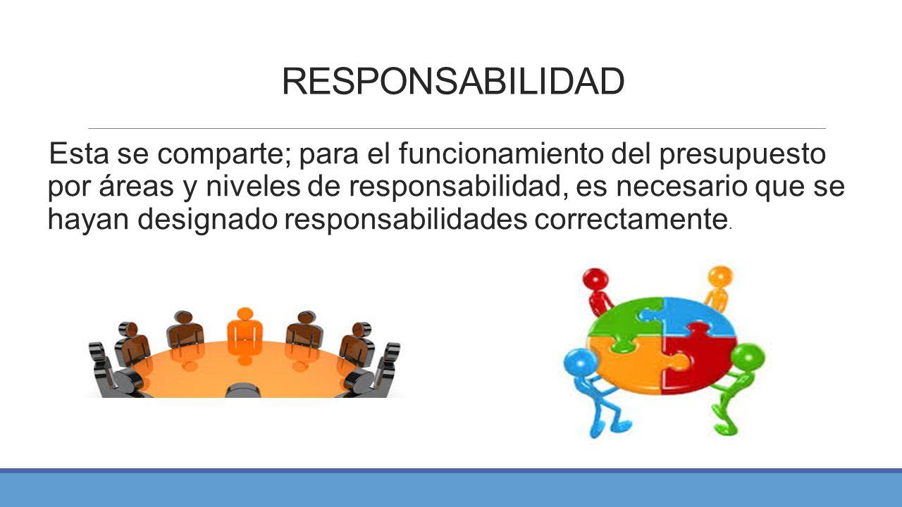 PRESUPUESTO POR ÁREAS Y NIVELES DE RESPONSABILIDAD - ppt video ...