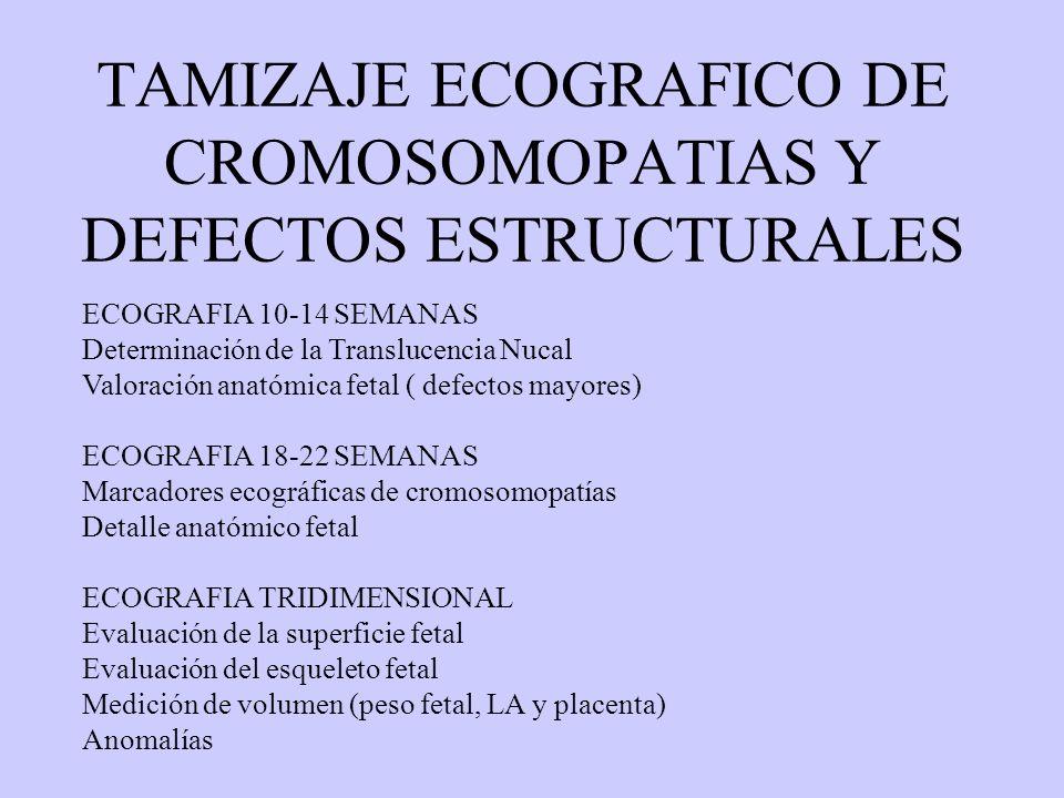 TECNICAS DE DIAGNOSTICO PRENATAL - ppt video online descargar