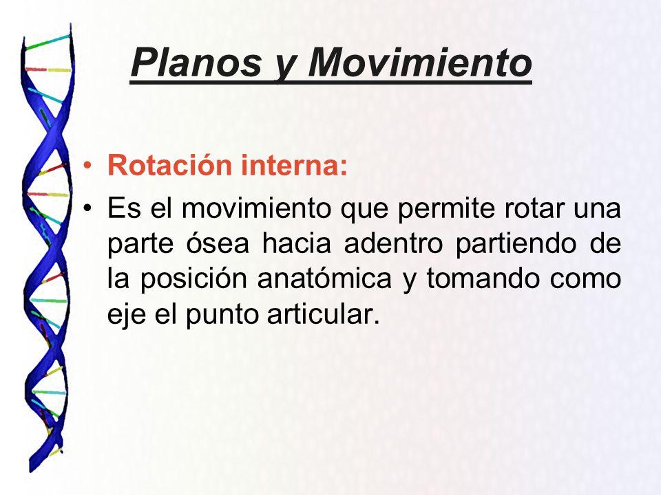Planos y Movimientos Osteología, Artrología y Miología - ppt video ...