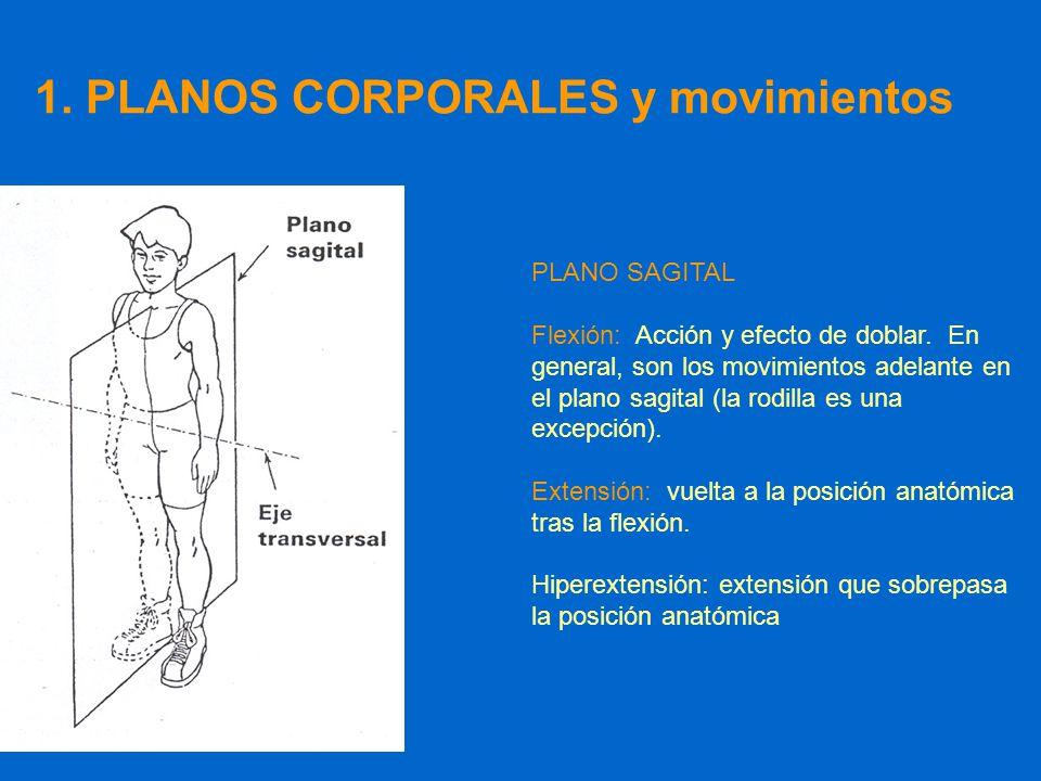 Tema 0: Generalidades. Qué tengo que saber de este tema ppt video ...