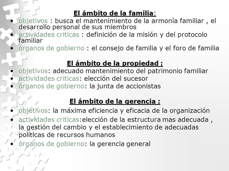Empresas Familiares Concepto Y Ambito Ventajas Limitaciones