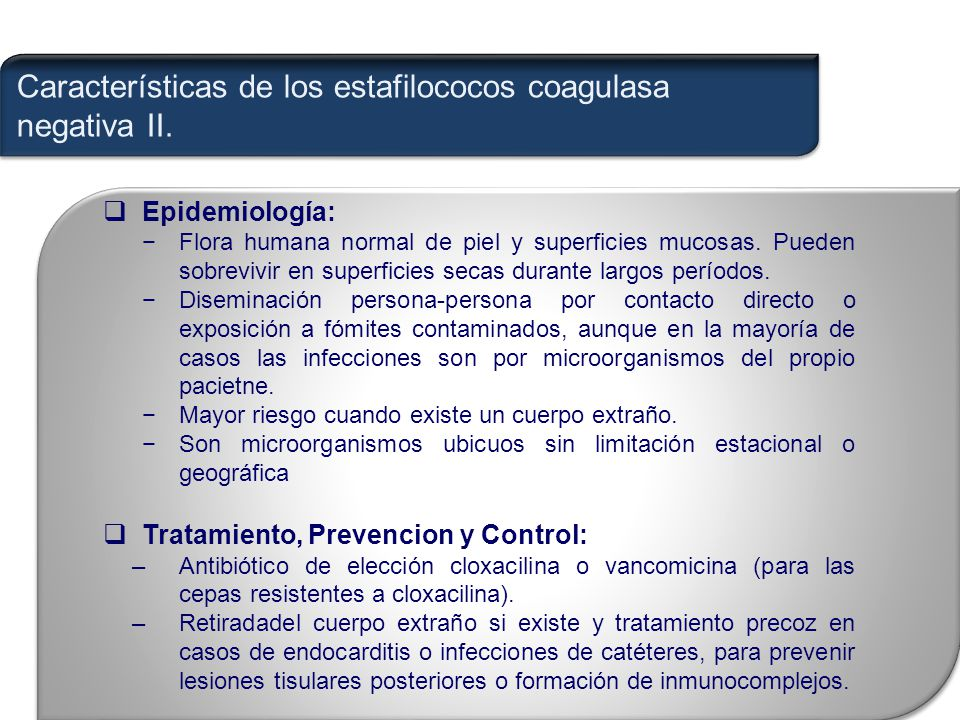 impetigo antibiotico de eleccion