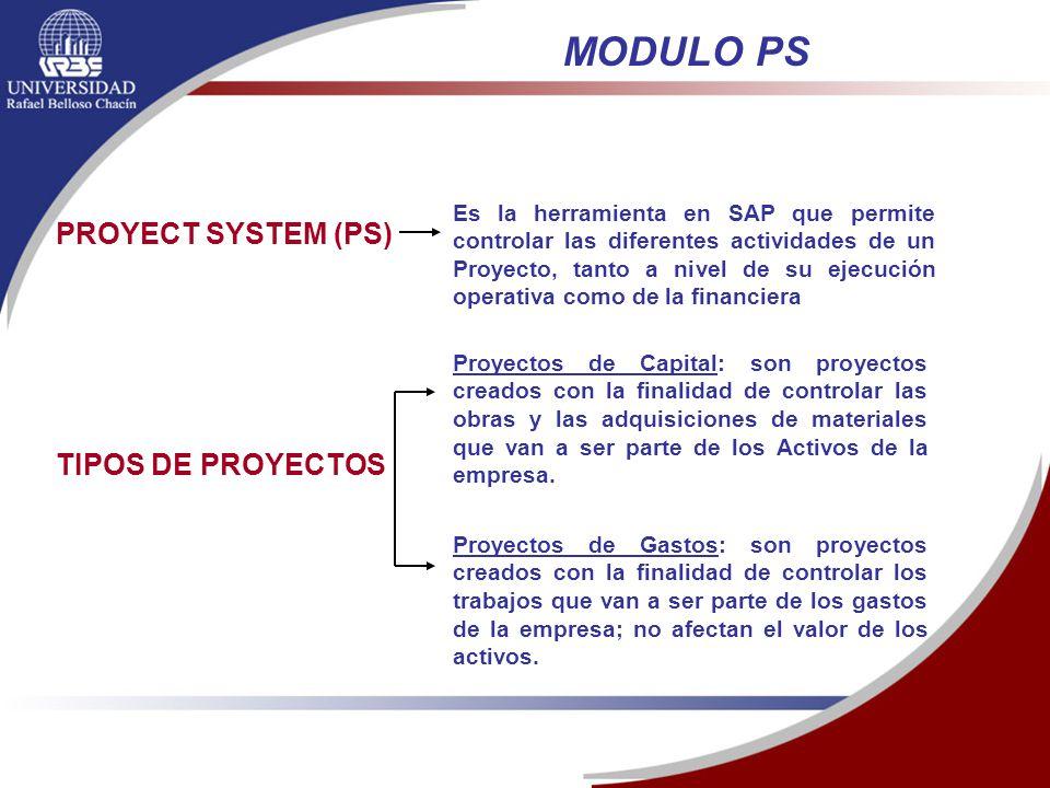 Módulo Sistema De Proyecto Ps Gestion De Proyectos De Sap