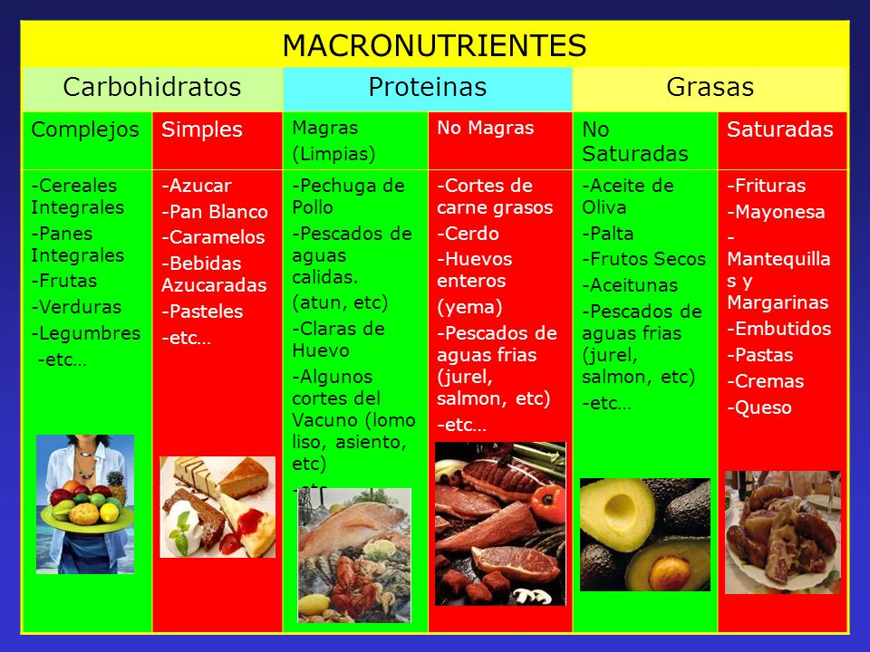 Famoso Carbohidratos Proteínas Grasas Festooning - Anatomía de Las ...