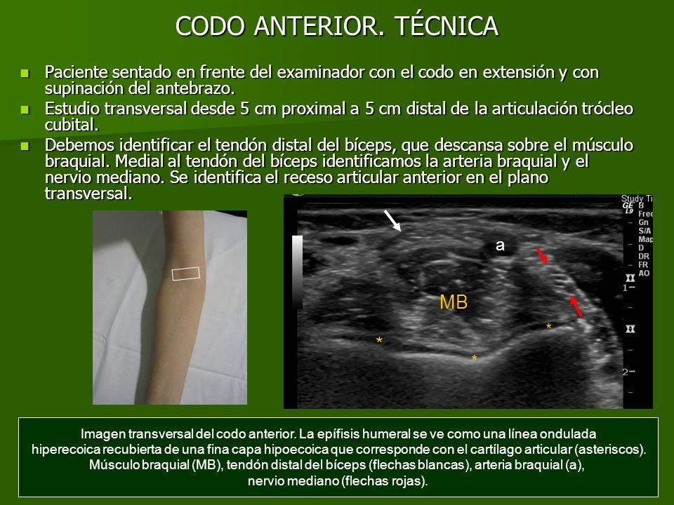 ANATOMÍA NORMAL DEL CODO - ppt descargar