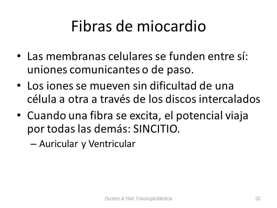 Professor: Verónica Pantoja . Lic. MSP. - ppt descargar