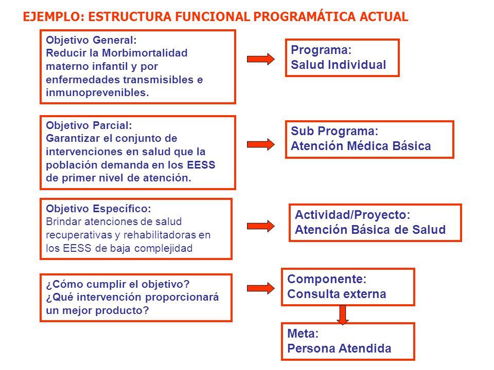 Ministerio De Salud Implicancias De La Estructura Funcional