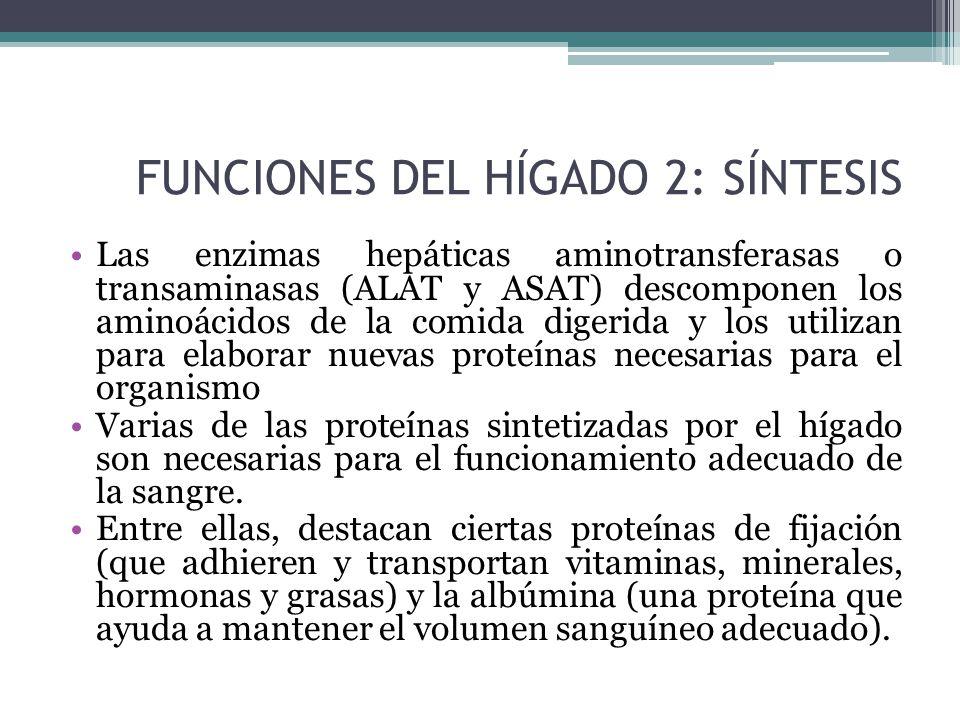 FUNCIONES DEL HÍGADO II PARTE. - ppt descargar