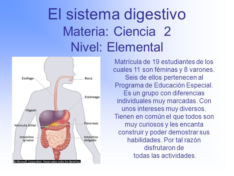 Mayra Enid Vélez Fournier Escuela: Santiago Negroni de Yauco - ppt ...