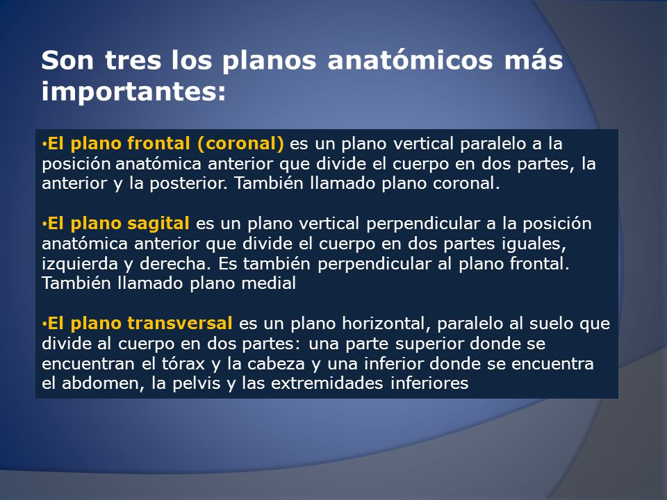 Los planos corporales. - ppt video online descargar