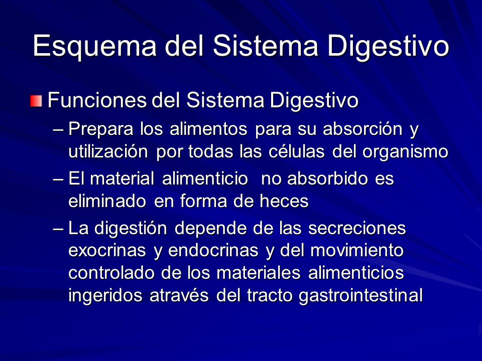 Anatomia del Sistema Digestivo - ppt video online descargar