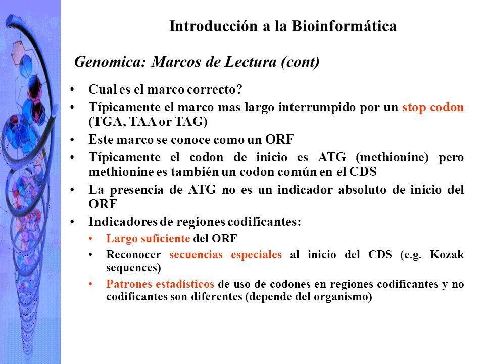 Introducción a la Bioinformática I Tomás Arredondo Vidal ppt descargar