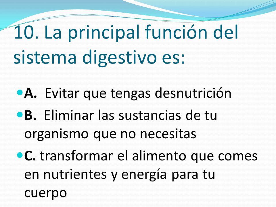 Evaluación Ciencias Naturales La célula – Sistema digestivo Grado 4º ...