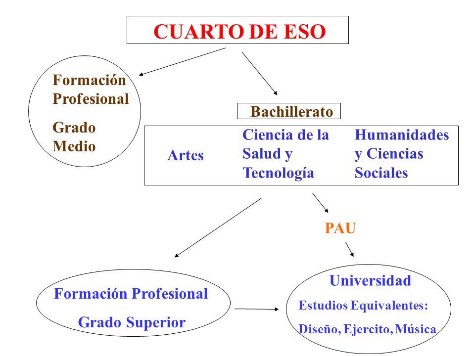 Itinerarios 4º de ESO Itinerario Científico: Bachillerato Ciencias ...