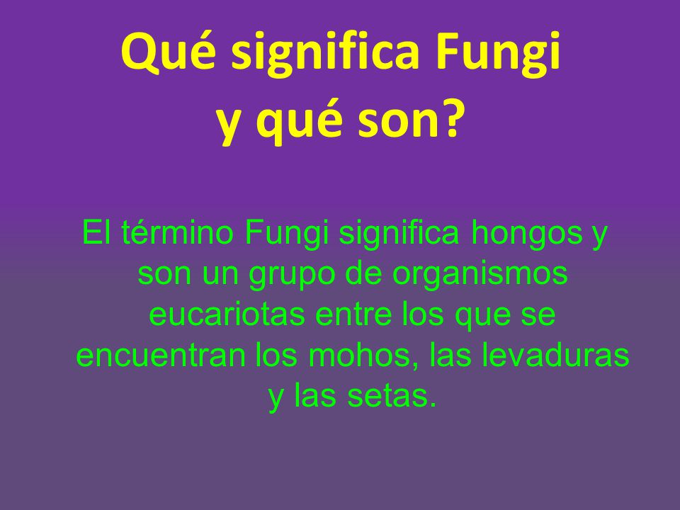 Reino Fungi Ppt Descargar