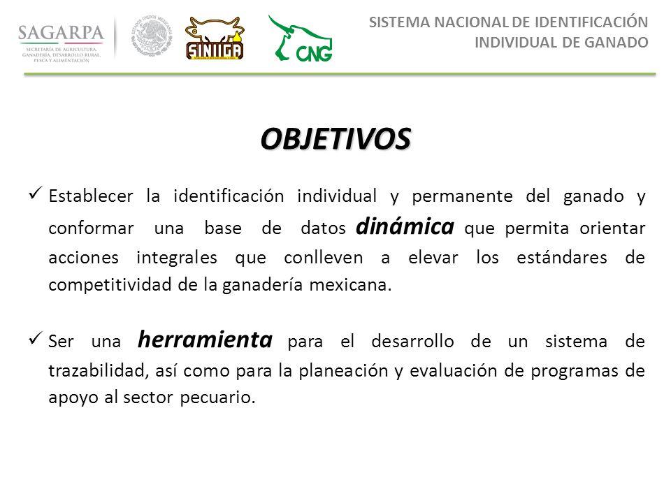 d0678560d690 3 SISTEMA NACIONAL DE IDENTIFICACIÓN INDIVIDUAL DE GANADO ...