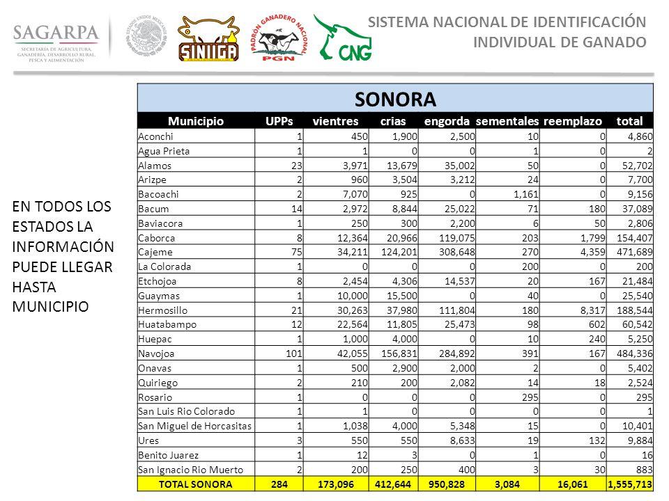 a104ab6162be SONORA SISTEMA NACIONAL DE IDENTIFICACIÓN INDIVIDUAL DE GANADO