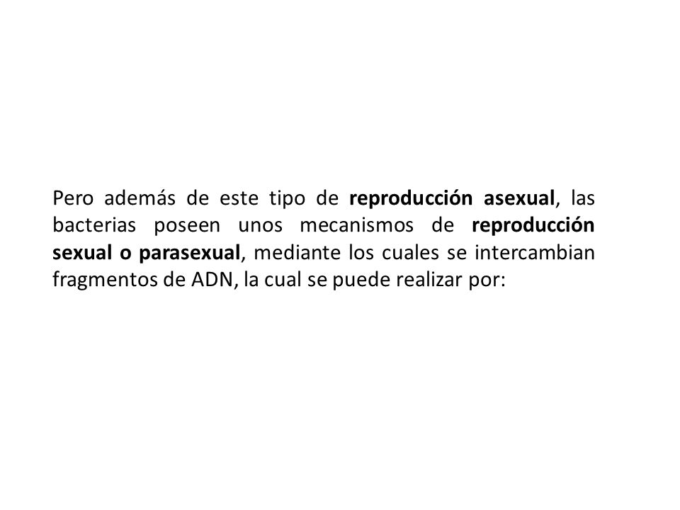 Reproduccion bacteriana asexual y parasexual