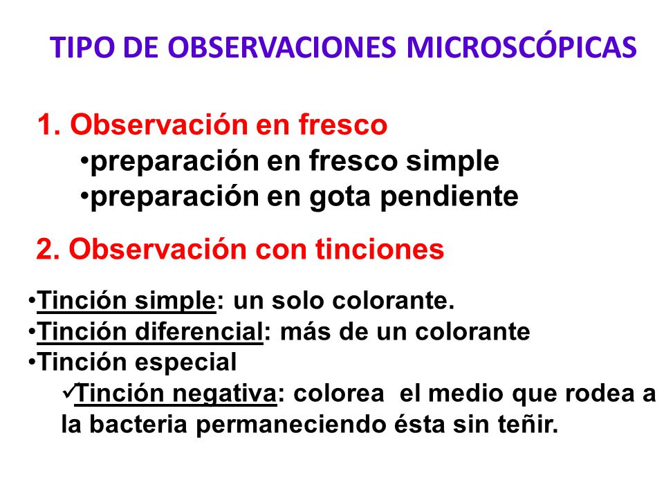 TECNICAS DE OBSERVACIÓN - ppt video online descargar