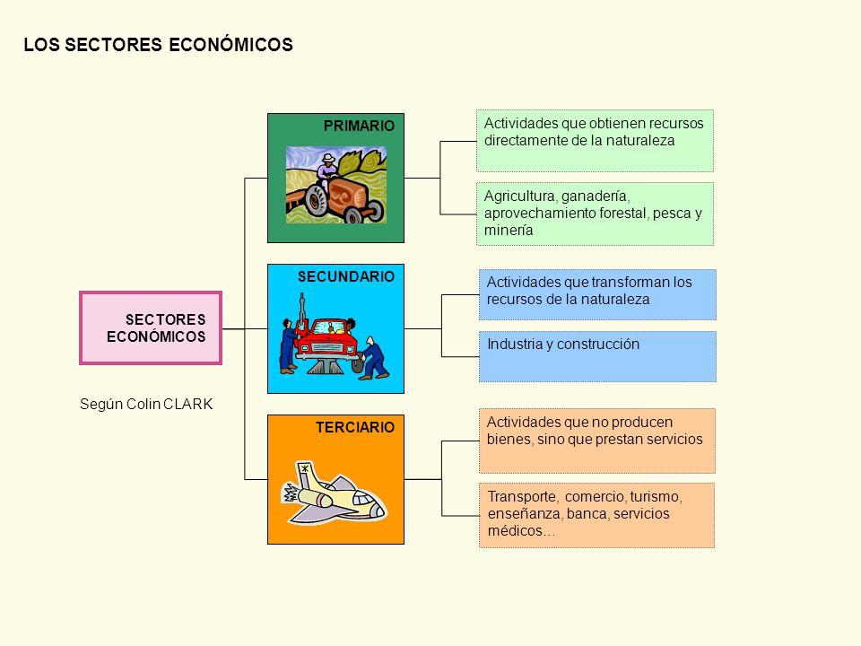 LOS SECTORES ECONÓMICOS - ppt descargar